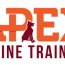 balanced dog training and boarding