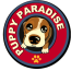 puppy paradise available puppies for