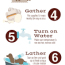 how often you should bathe your dog